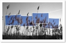 Wallpaper1280x820