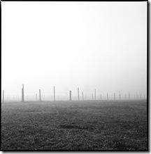 Nebel_3