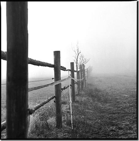 Nebel_4