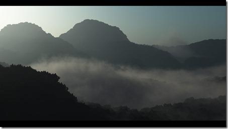 Jungle_Dawn_1